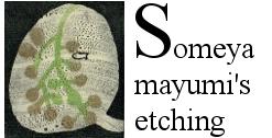 Someya mayumi's etching